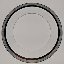 Disco di vetro del codificatore per il codificatore