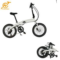 La Chine usine Mini gros châssis vélo Vélo électrique pliant Ebike