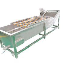 Fruits et légumes industriels prix d'usine Machine à laver avec une capacité 500KGS-4000kgs en acier inoxydable 304 Wahsh Fram à toutes sortes de légumes et fruits