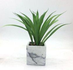 Césped Artificial Decoración Cerámica Bonsai