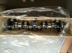 Cummins S6d125, S6d140 S6d155, S6d170 Caterpillar 3612/3616 Isuzu Weichai Shangchai Perkins Yanmar Shantui Bulldozer 굴삭기 크랭크축 엔진 부품
