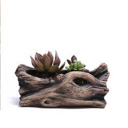 2021 الأسمنت الأسمنت الأسمنت الأسمنجلي الجديد في الهواء الطلق محاكاة الخشب بالجملة نبات الزهرة الطبيعية الحقيقية