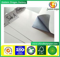 Núcleo Verde revestido de reprodução sexual/embalagem de cartão 20 pavimentos/placas educativas