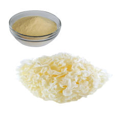 100% naturel Tremella fuciformis extrait 30 % des polysaccharides Tremella fuciformis poudre extrait botanique Naturals initiale