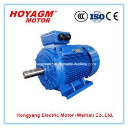 Motor van de Uitrusting gelijkstroom van de Omzetting van de Auto van de Efficiency van het Lage Voltage 0.75-375kw van CEI de Ce Goedgekeurde Universele Ie2 Elektrische voor Industrie