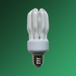 Lotus 에너지 절약 램프/CFL(CH9016)