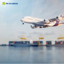 Absinken-Verschiffen China zu Europa vom Shenzhen-Fracht-Absender Haus-Haus auf Air