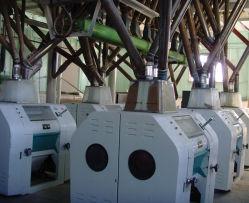 ماكينة التفريز التلقائي بالكامل 50t-200t/24H من الذرة/الذرة المصنّع