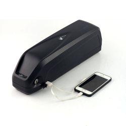 48V 10ah 18650 Energien-Batterie mit USB für Ebike
