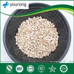 Coix Startwert für Zufallsgenerator, eine traditionelle chinesische Medizin mit einer langen Geschichte, Pflanzenauszug, organisches Puder