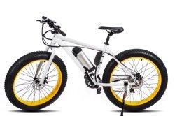 Mis à niveau système d'assistance de la Pédale montagne Vélo électrique a parlé des pneus de roue de graisse