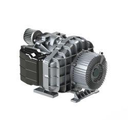 Olievrije 3.7kw 320L/Min 8bar de Olievrije Compressor van de Lucht van de Rol voor Voedsel, Geneeskunde, Elektronika