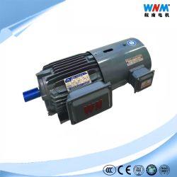 Ie2 45kw 4p B5 380V 3pH 50Hz Bremsen-Motor mit Ausgabe 180VDC des Bremsen-Input-Entzerrer-400VAC mit Hand freigegebener Klage zum Inverter-Thermistor