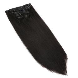 Clip de couleur naturelle sur les Extensions de cheveux humains Remy perruque de cheveux droites