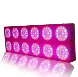 반사체 500W LED Grow Light Growth Flower Switches Full Spectrum IR Lamp Panel