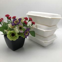 450ML Boîte de pâte à papier biodégradable contenant des aliments de bagasse de canne à sucre la vaisselle de table
