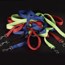 Ligero, resistente y fuerte formación de perro de Nylon Correa, de 5 pies de largo