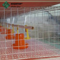 H schreiben Batterie-Huhn-Geflügelfarm-Rahmen für Bratrost/Hünchen/Brüter