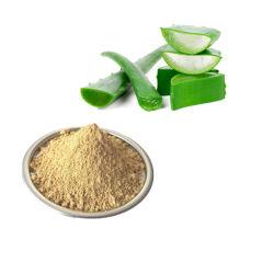 베스트 셀러 제품 알로인 100% 천연 고품질 알로에 베라 추출물 경쟁력 있는 가격의 파우더