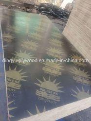 El uso de la construcción de la película de color marrón al aire libre frente de 18mm Contrachapado de chopo Core