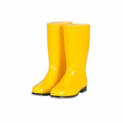 최고 Anti-Slip 남자 단화가 고품질 PVC 청정실 안전 안락에 의하여 ESD 구두를 신긴다