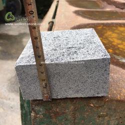 División Natural G654 de la pavimentadora de granito gris oscuro para suelos de entrada