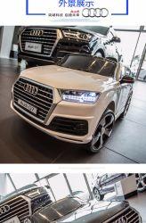 Elektrische Auto van uitstekende kwaliteit van de Levering van de Fabriek van China van het Stuk speelgoed van Lage Kosten de Elektrische met R/C lC-Car050