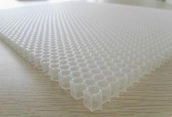 China PP Honeycomb Core para condiciones de humedad alta