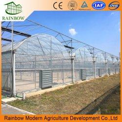 スマートマルチスパントンネル / アーチ型 PE/ ポーフィルムプラスチック農業 / 商業エコ 温室効果ガスの開発