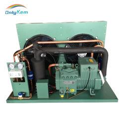 A armazenagem a frio com Compressor Bitzer Unidade de condensação