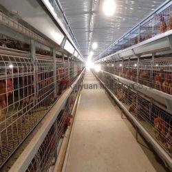 Gabbia per Broiler automatica di pollame Nuova desinatura Wiremeshes zincati a caldo