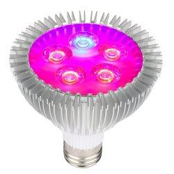 Klein PAR E27 E26 Blooming-LED voor binnen-bloemen Grow-licht