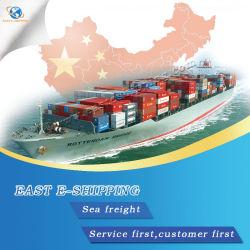 De snel Verschepende Dienst van Shenzhen aan wereldwijd door Overzeese Vracht