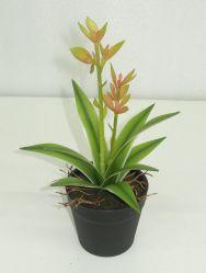 Mini-orange/vert en plastique de plantes succulentes artificielle du semoir avec la racine pour décoration intérieure