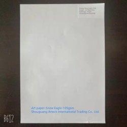 Papel artístico 105gsm Águia de neve de revista/catalog/Folhetos/Brochuras da Impressão Offset