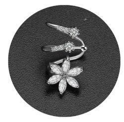 Fashion Mesdames Earrings conçoit des photos de zircone Clip oreille Wrap Earrings brassard