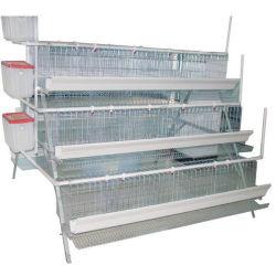 자동적인 장비 가금 농장 새는 판매를 위한 H 유형 디자인 닭 계란 층 암탉 감금소를 감금한다