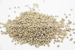 Pimenta branca/Fructus Piperis Alba/Milho Pimenta Branca
