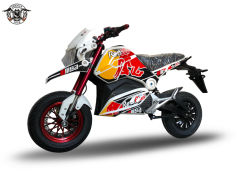 EEC электрической мощности мотоциклов аккумуляторной кислотой привести взрослых Racing настройка цвета электродвигателя