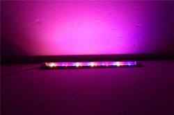 lo spettro completo sottile Osram LED di 80cm coltiva gli indicatori luminosi per l'agricoltura verticale