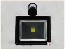 Helles 10With20With30With50With80With100W LED Flutlicht des Garten-mit des Motin Fühler-wasserdichten im Freien LED Flut-Licht-Nachrichten Flut-der Beleuchtung-LED