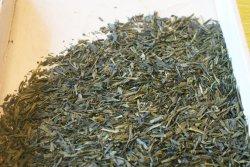 Hubei China cozido no vapor Sencha Orgânico Chá Verde