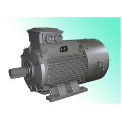 Yvp 고능률 3 단계 주파수 변환 AC 모터