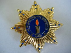 Golden Star Emblema de forma requintada com Crystone (ASNY-LP-TM-037)