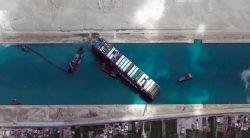 Professional Forwarder International Logistics Sea Freight Shipping Agent by Sea