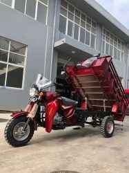 Прогулка на рикше/ Три колеса мотоцикла/ инвалидных колясках (TR-6)