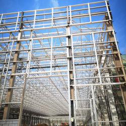 Безопасности высотное сегменте панельного домостроения в системы хранения данных стали структуры рамы опорных заводской сварки быстро Apartment Hotel склад строительство мастерской