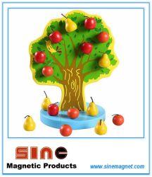 Juguete de madera de árbol frutal magnético/Juguete Educativo