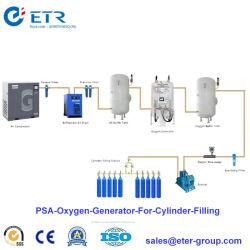 중국 제조 실린더 충전물을%s 의학 오두막 병원 Psa 산소 가스 플랜트