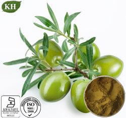 Extracto de la hoja de olivo, Oleuropein 20%-80% Hydroxytyrosol 5%-50%